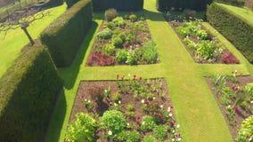 Schöne Mischung von Tulpen in einem ummauerten Garten stock footage