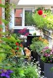 Schöne moderne Terrasse mit vielen Blumen Stockbild