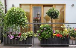 Schöne moderne Terrasse mit vielen Blumen Lizenzfreie Stockfotos