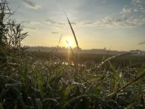 Schöne Morgenansicht und erstaunlicher Sonnenaufgang von heute stockfotografie
