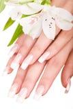 Schöne Nägel und Finger Stockbild