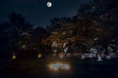 Schöne Nachtlandschaft des großen Vollmonds, der über die Gebirgsstraße mit Hügel und Bäumen steigt Wald und Berge Südteils O Stockbild