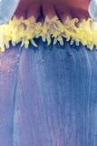 schöne Nahaufnahme der Banane Stockbilder
