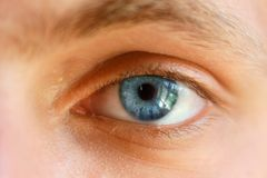 Schöne Nahaufnahme des blauen Auges, helle Augen Stockfoto