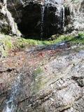 Schöne natürliche und wilde Wasserfall-Landschaft lizenzfreie stockfotos