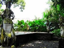 Schöne Natur in Bali lizenzfreie stockbilder
