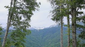 Schöne Natur, Wälder und Berge, Landschaft stock footage