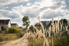 Schöne Naturdorflandschaft mit Sonnenaufflackern und -Weizenkeim mit Wolken lizenzfreie stockbilder