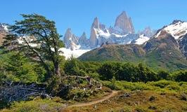 Schöne Naturlandschaft in Argentinien Lizenzfreies Stockfoto