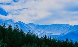 Schöne nebelige mystische alpine Gebirgslandschaft Nebelwolken an Lizenzfreie Stockfotografie