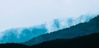 Schöne nebelige mystische Berge Nebelwolken an der meiner Kiefer Stockbilder