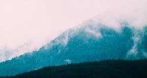 Schöne nebelige mystische Berge Nebelwolken an der meiner Kiefer Lizenzfreie Stockfotografie