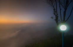 Schöne Niederlassung des Baums und nebeliger Sonnenaufgang gestalten morgens landschaftlich Stockfoto