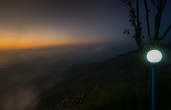 Schöne Niederlassung des Baums und nebeliger Sonnenaufgang gestalten morgens landschaftlich Stockfotos