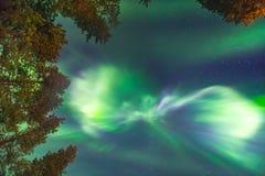Schöne Nordlichter obenliegend Lizenzfreie Stockfotografie