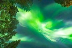 Schöne Nordlichter obenliegend Stockbild