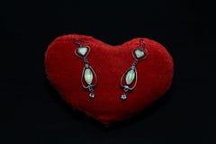 Schöne Ohrringe auf rotem Kissen Stockbilder