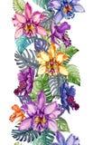 Schöne Orchidee blüht und monstera verlässt auf weißem Hintergrund Nahtloses tropisches Blumenmuster Gerade und schmal Stockbild
