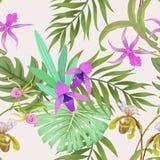 Schöne Orchidee mit tropischem Blatt vektor abbildung