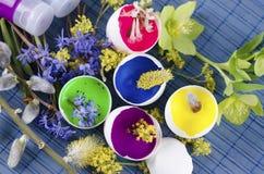 Schöne Ostern-Dekoration mit Eierschalen mit Farben und Frühling blüht Stockfotos