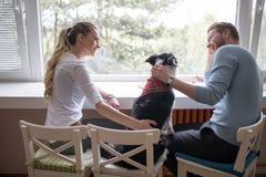 Schöne Paare, die zu Hause Begleiter ihres Hundes genießen stockfotos