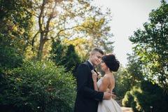 Schöne Paare von glücklichen stilvollen Jungvermählten auf einem Weg in der Sonne lizenzfreies stockfoto