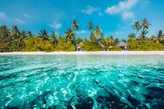 Schöne Palme über weißem Sandstrand Schöne Palmen über weißem Sandstrand und überraschendem Meer Sommerferien und Feiertagskonzep lizenzfreie stockfotos