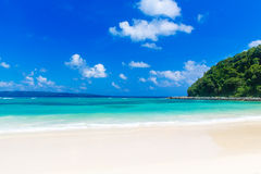 Schöne Palme über weißem Sandstrand Schöner weißer Sandstrand, das tropische Meer Summ Stockfotos