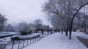 Schöne Parklandschaft des Winters Stockfoto