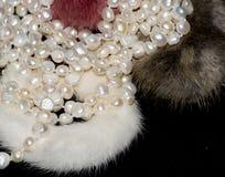 Schöne Perlenhalskette auf weißem Hintergrund lizenzfreie stockfotografie