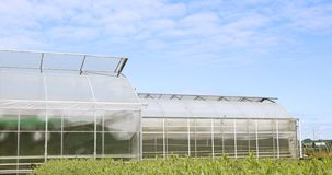 Schöne Plastikgewächshäuser und das Gemüse, die mit Veggie gepflanzt wird, arbeitet im Garten stock footage