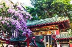 Schöne purpurrote Blüte blüht am chinesischen Zugang, Sydney China Town Lizenzfreie Stockfotos