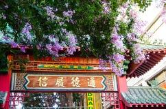 Schöne purpurrote Blüte blüht am chinesischen Zugang, Sydney China Town Stockbilder