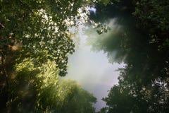 Schöne Quelle von ljubljanica im vrhnika, Slowenien stockfotografie