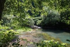Schöne Quelle von ljubljanica im vrhnika, Slowenien stockfotos