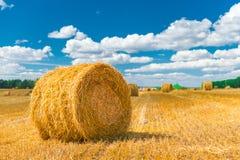 Schöne Räume für die Landwirtschaft Stockbild