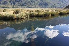 Schöne Reflexion der Landschaft der Wiese im Spiegella Stockfotografie