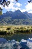 Schöne Reflexion der Landschaft der Wiese im Spiegella Lizenzfreies Stockbild
