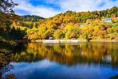 Schöne Reflexion von bunten Bäumen im Wasser von See während des Herbstes stockfotografie