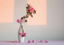 Schöne reife Äpfel und Niederlassungen im Vase Lizenzfreies Stockfoto