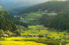 Schöne Reisterrassen von Yotsuya, Präfektur Aichi, Japan Stockfoto