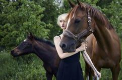 Schöne Reiterfrau mit Pferden Lizenzfreies Stockbild