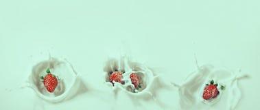 Schöne Retro- Ansicht von den Erdbeeren, die unten in Milch mit sinken stockbilder