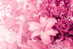 Schöne rosa Liebes-Farbtonblume Stockbilder