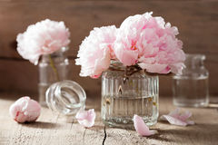 Schöne rosa Pfingstrose blüht Blumenstrauß im Vase Stockbild