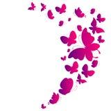 Schöne rosa Schmetterlinge, lokalisiert auf einem Weiß Lizenzfreies Stockbild