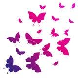 Schöne rosa Schmetterlinge, lokalisiert auf einem Weiß Lizenzfreie Stockfotografie