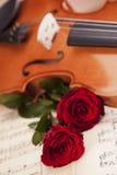 Schöne Rosen und Violine! stockfotos