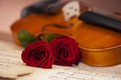 Schöne Rosen und Violine! lizenzfreies stockfoto