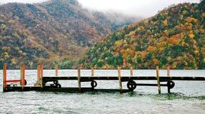 Schöne Rotahorn Momiji-Blätter in Nikko stockbild